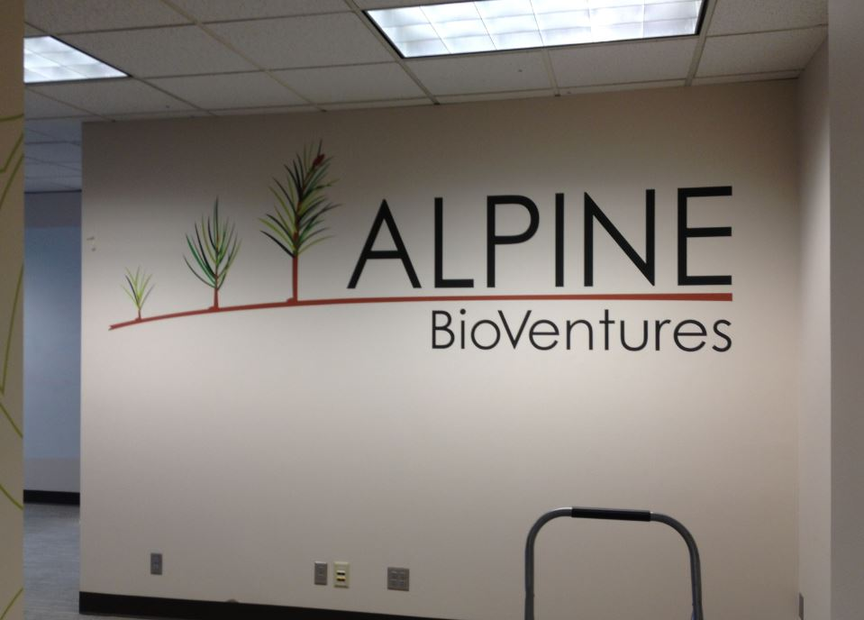 Decal Wall Graphics
