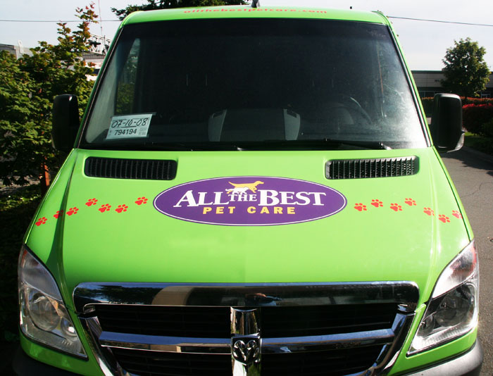 Cargo Van Graphics
