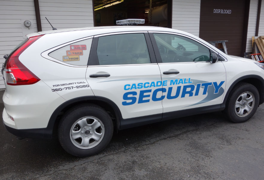 Security Graphics